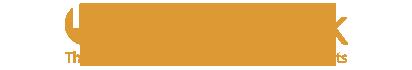 I-BIT logo